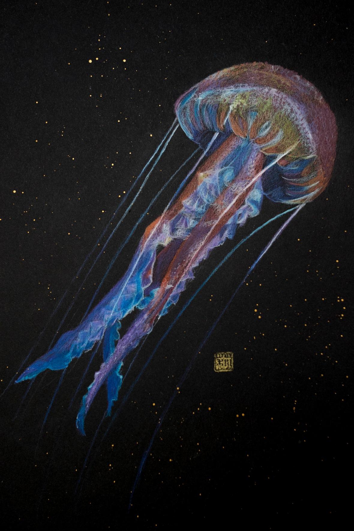 medusa01